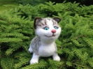 Котенок ТАББИ